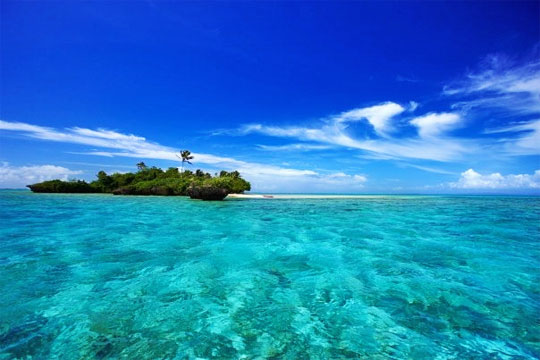 Jean-Michel-Cousteau-Fiji-Islands-Resort